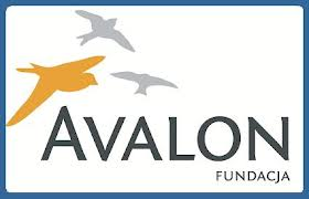 Fundacja Avalon – bezpośrednia pomóc niepełnosprawnym